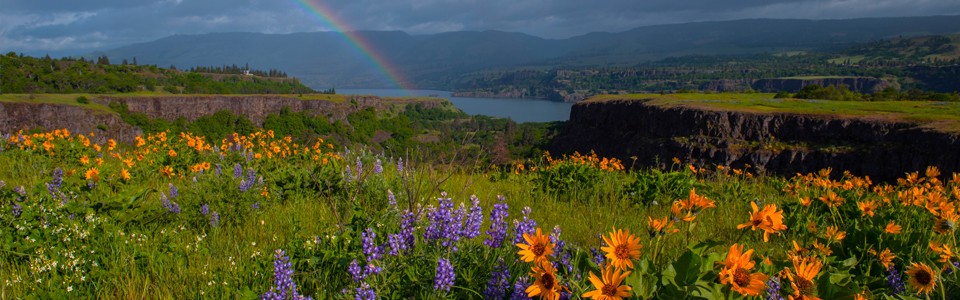 Hood_Gorge_Regions_The_Dalles_02
